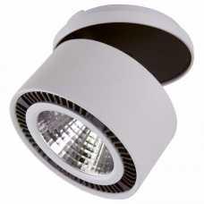 Светодиодный Накладной Светильник Lightstar FORTE INCA 214820