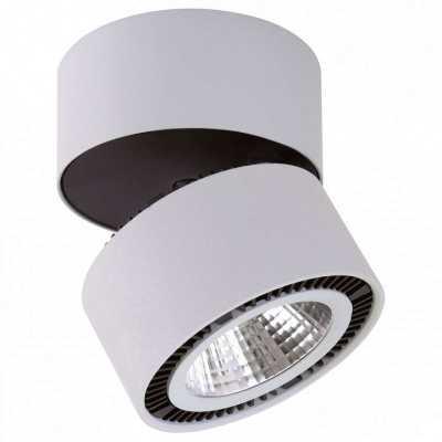 Светодиодный Накладной Светильник Lightstar FORTE INCA 214830