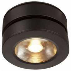 Накладной светильник Maytoni Alivar C022CL-L12B