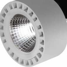 Светодиодный потолочный светильник Lightstar Forte 381393