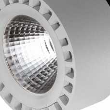 Светодиодный потолочный светильник Lightstar Forte 381394