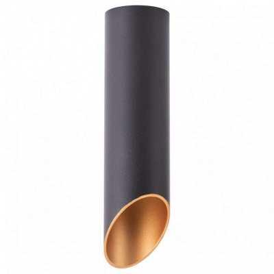 Накладной светильник Arte Lamp Pilon-Silver A1535PL-1BK