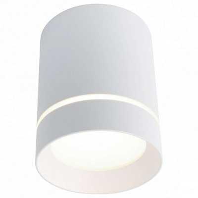 Накладной светильник Arte Lamp 1909 A1909PL-1WH