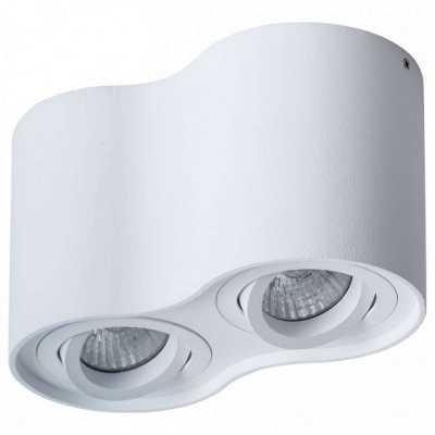 Накладной светильник Arte Lamp Falcon A5645PL-2WH