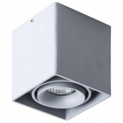 Накладной светильник Arte Lamp Pictor A5654PL-1GY