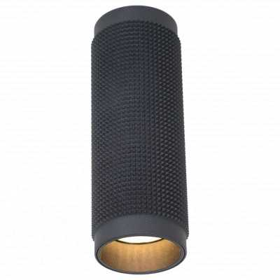 Накладной светильник Favourite Kinescope 2452-1C