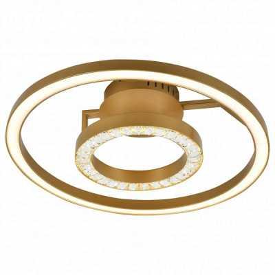 Накладной светильник Favourite Sanori 2546-2U