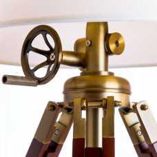 Настольная лампа декоративная Loft it LOFT701 LOFT7012-BR